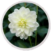 Beautiful And Fresh Dahlias In The Butchrt  Gardens,vancouver Island 3. Round Beach Towel
