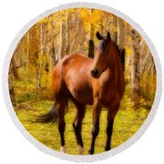Beautiful Autumn Horse Round Beach Towel