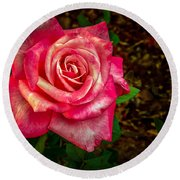 Beautiful Bicolor Rose Round Beach Towel