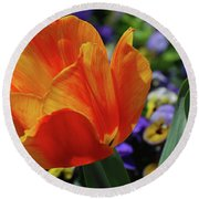 Beautiful Blooming Orange And Red Tulip Flower Blossom Round Beach Towel