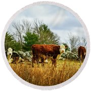 Beautiful Bovine 1 Round Beach Towel