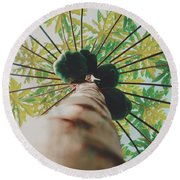 Beautiful Branches And Leaves Of Papaya Tree Along With The Tasty Exotic Fruit Fill The Frame Round Beach Towel