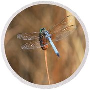Beautiful Broken Wing Round Beach Towel