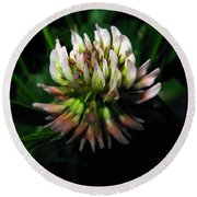 Beautiful Clover Blossom Round Beach Towel