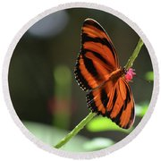 Beautiful Color Patterns To An Oak Tiger Butterfly  Round Beach Towel