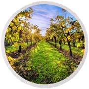 Beautiful Colors On The Vines Round Beach Towel