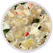 Beautiful Creamy White Pink Rhodies Floral Garden Baslee Troutman Round Beach Towel