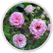 Beautiful Delicate Pink Roses On Green Leaves Background. Round Beach Towel
