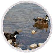 Beautiful Ducks Round Beach Towel