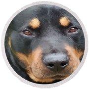 Beautiful Female Rottweiler Portrait Vector Round Beach Towel