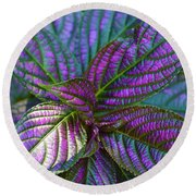 Beautiful Foliage  Round Beach Towel