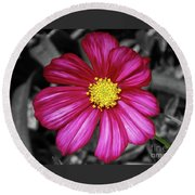 Beautiful Fuchsia Flower Round Beach Towel