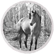 Beautiful Horse In Black And White Round Beach Towel