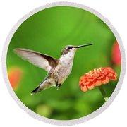 Beautiful Hummingbird Round Beach Towel