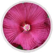 Beautiful Large Hibiscus Round Beach Towel