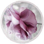 Beautiful Lavender Rose Round Beach Towel