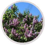 Beautiful Lilacs Day Round Beach Towel