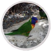 Beautiful Lorikeets Round Beach Towel