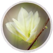 Beautiful Magnolia Original Painting 01 By H G Mielke Round Beach Towel