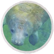 Beautiful Manatee Round Beach Towel