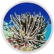 Beautiful Marine Plants 11 Round Beach Towel by Lanjee Chee