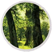 Beautiful Oak Trees Reach To The Skies Round Beach Towel