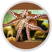 Beautiful Octopus Round Beach Towel