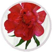 Beautiful Peony Flower. Round Beach Towel