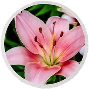 Beautiful Pink Lily Round Beach Towel