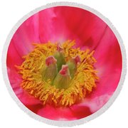 Beautiful Pink Peony Flower Vertical Round Beach Towel