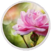 Beautiful Pink Rose Blooming In Garden With Natural Bokeh Round Beach Towel