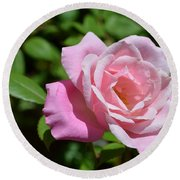Beautiful Pink Rose Round Beach Towel