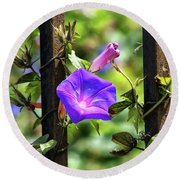Beautiful Railroad Vine Flower II  Round Beach Towel