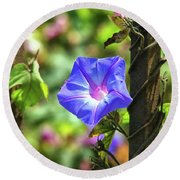 Beautiful Railroad Vine Flower Round Beach Towel
