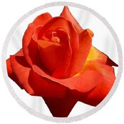 Beautiful Red Rose Photograph Vector Round Beach Towel