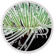 Beautiful Sea Anemone 3 Round Beach Towel