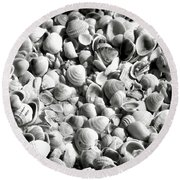 Beautiful Seashells Black And White Round Beach Towel