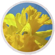 Beautiful Spring Daffodil Bouquet Flowers Blue Sky Art Prints Baslee Troutman Round Beach Towel
