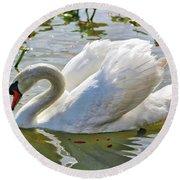 Beautiful Swan Round Beach Towel