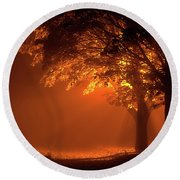 Beautiful Trees At Night With Orange Light Round Beach Towel