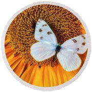 Beautiful White Butterfly On Sunflower Round Beach Towel