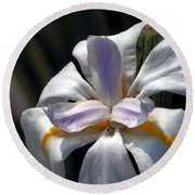 Beautiful White Day Lily Round Beach Towel