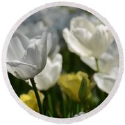Beautiful White Tulips Round Beach Towel