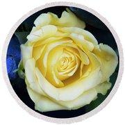 Beautiful Yellow Rose Round Beach Towel