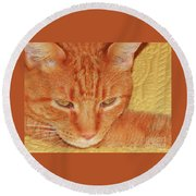 Beauty Of A Cat Round Beach Towel