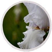 Beauty Of An Iris Round Beach Towel