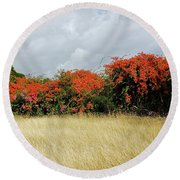 Beauty Of Bougainvillea Round Beach Towel