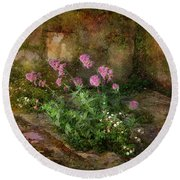 Beauty On An Old Stone Wall Round Beach Towel