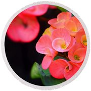 Beauty And Thorns Round Beach Towel