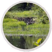 Beaver Pond Scene Round Beach Towel